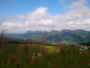 曽爾高原の風景