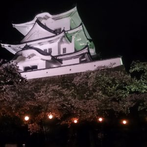 伊賀上野城と桜