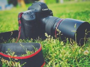 芝生とカメラ